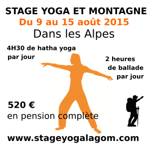 stage yoga aout 2015