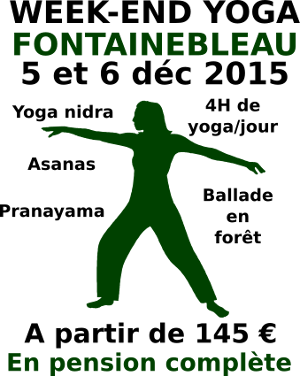 stage fontainebleau