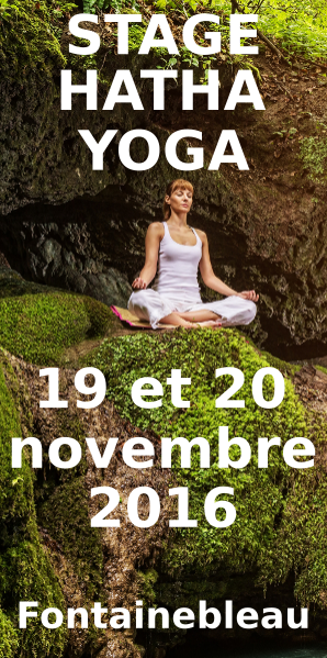 stage-yoga-fontainebleau-2016