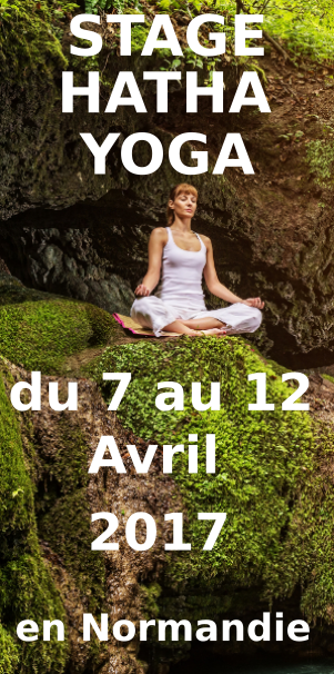 widget-yoga-normandie-2017